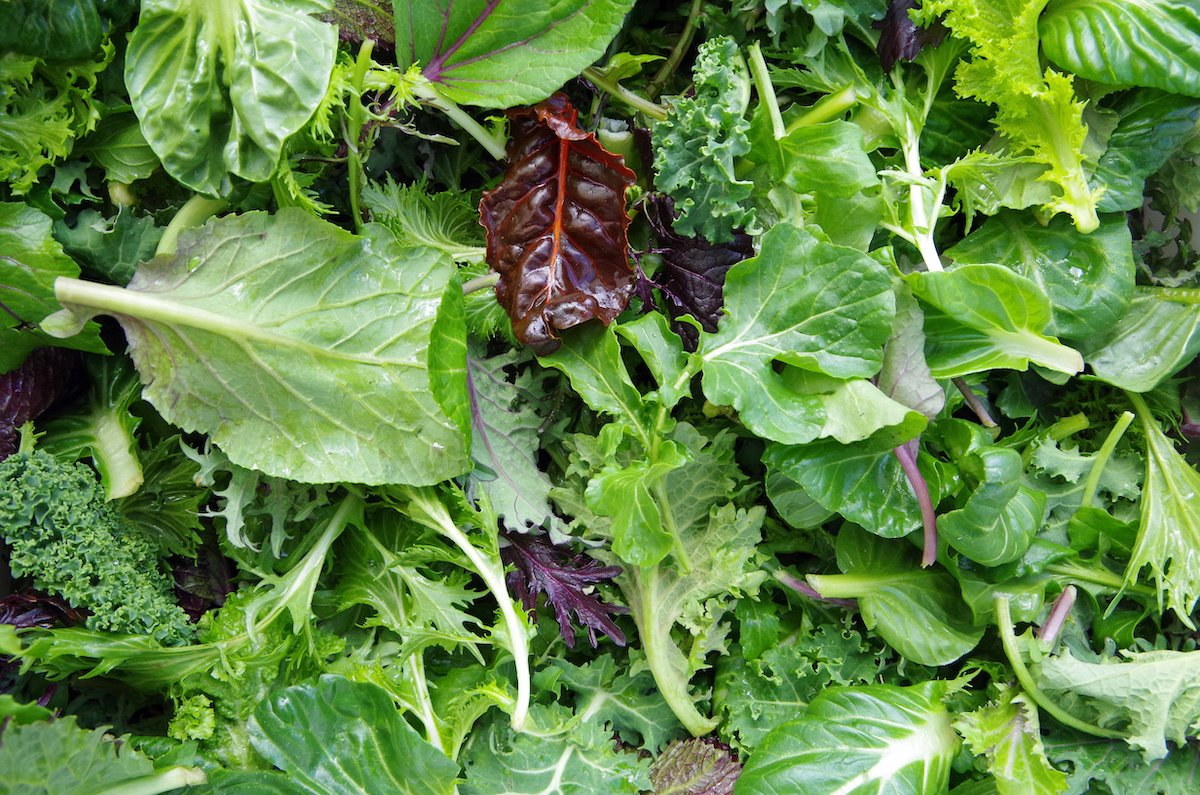 The FDA's Leafy Greens Action Plan