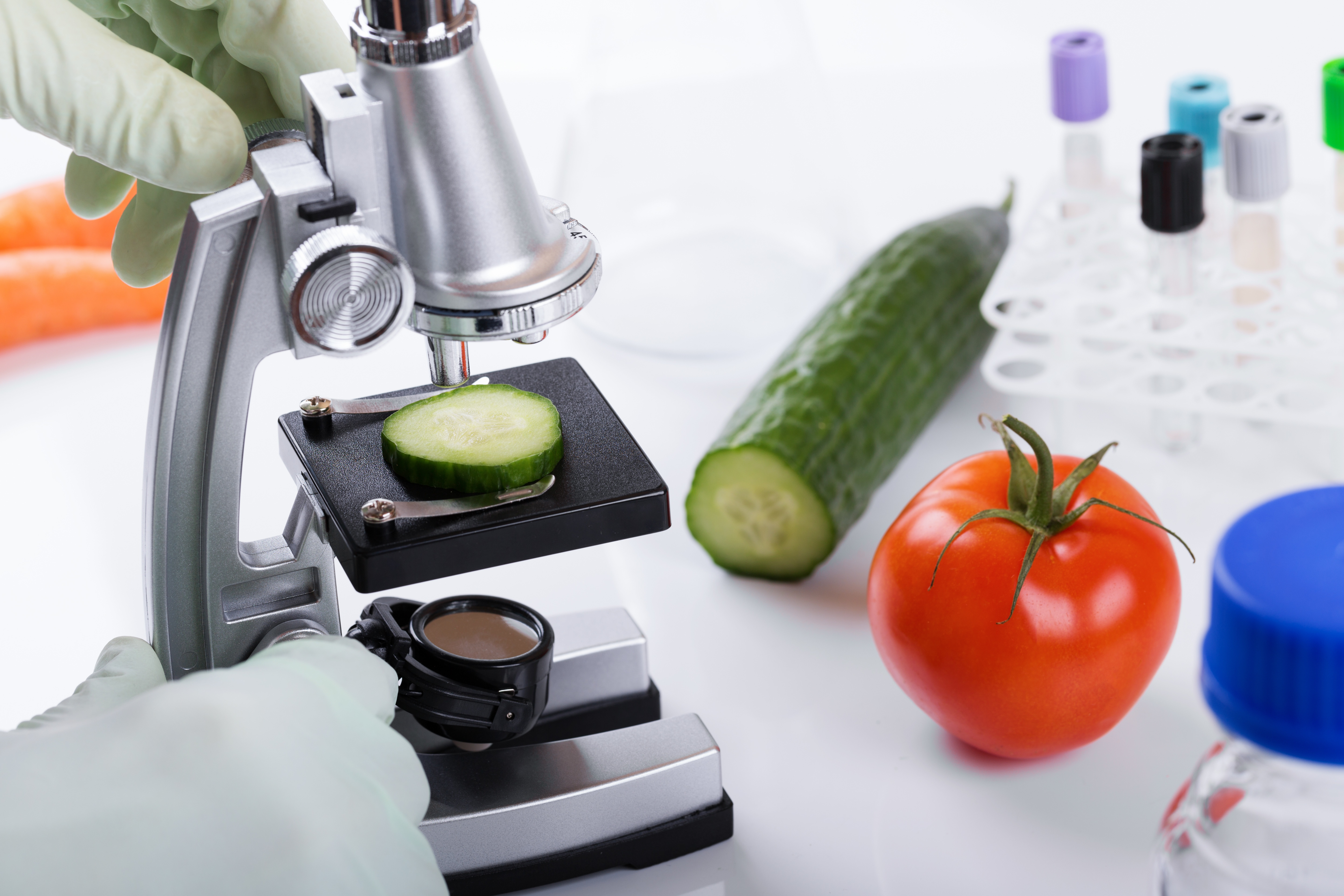 Under the Microscope: Food Industry Sees Increase in FDA Inspections