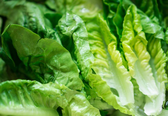 In Wake of Romaine Lettuce Recall, FoodLogiQ Calls Supply Chain Management and Food Traceability
